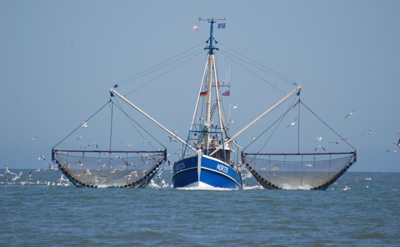 Despacho Pesca, Lista3ª-4ª